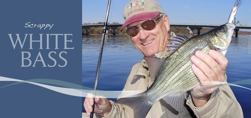 2018 st croix river fishing information public access for White bass fishing